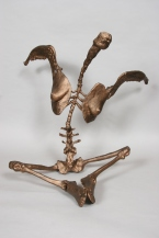 sculpture-10-02-06-021